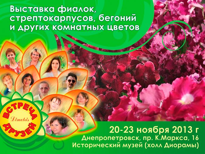 Выставка фиалок, стрептокарпусов, бегоний в Днепропетровске