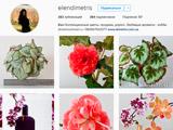 Instagram Elendimetris